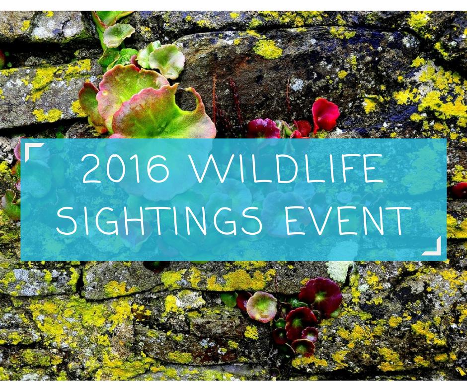 2016-wildlife-sighting-event