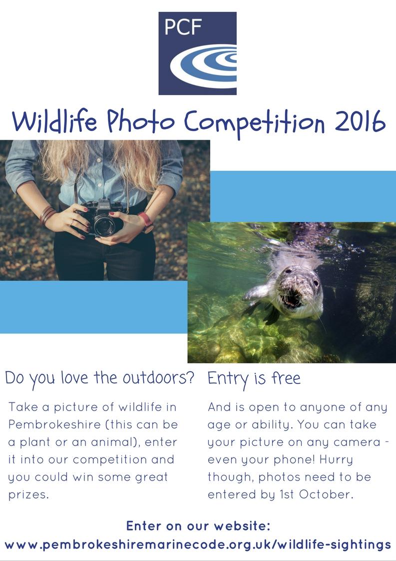 wildlife-photo-competition